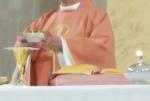 parrocchia santernesto giornata della solidarietà (9)