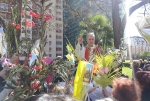 settimana santa 2015 parrocchia santernesto (3)