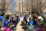 settimana santa 2015 parrocchia santernesto (6)